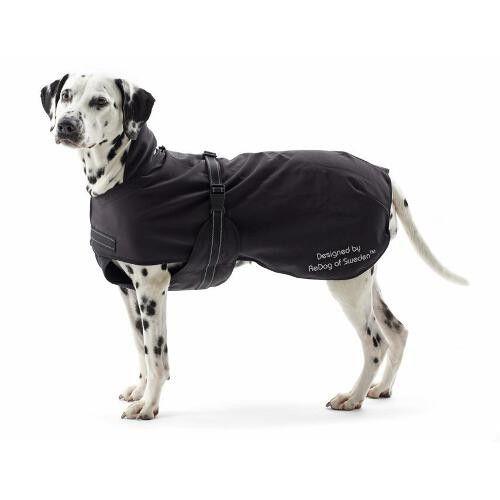 Hundemantel Rehab Softshell (Kruuse)