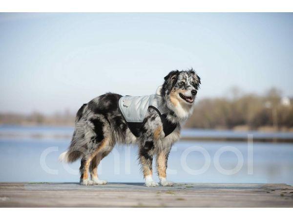Kühlweste (Hund) Cani Cool