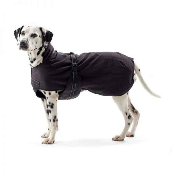 Dackel-gross Hundemantel Rehab Softshell Kruuse