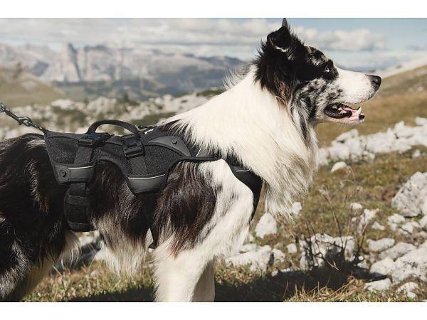 Hurtta Trail - Rucksack mit separatem Geschirr M
