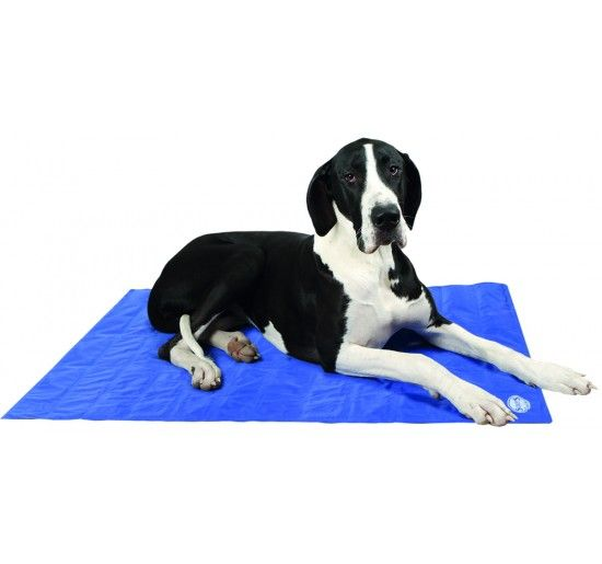 Self Cooling Gel Mat Scruff's