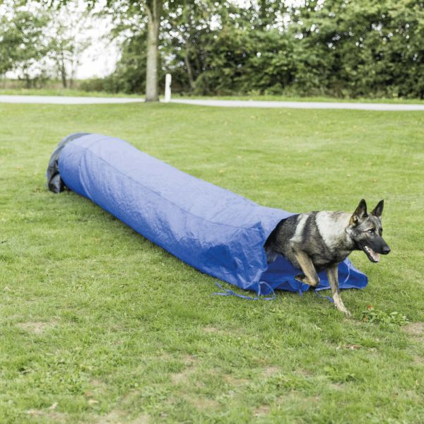 Agility Sack Tunnel