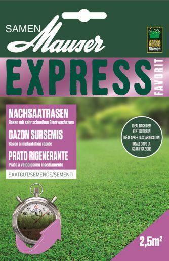 Express Rasen schnell wachsend 50g