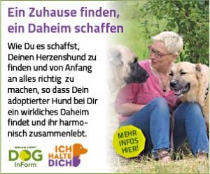 Daheim_300x250-300x249