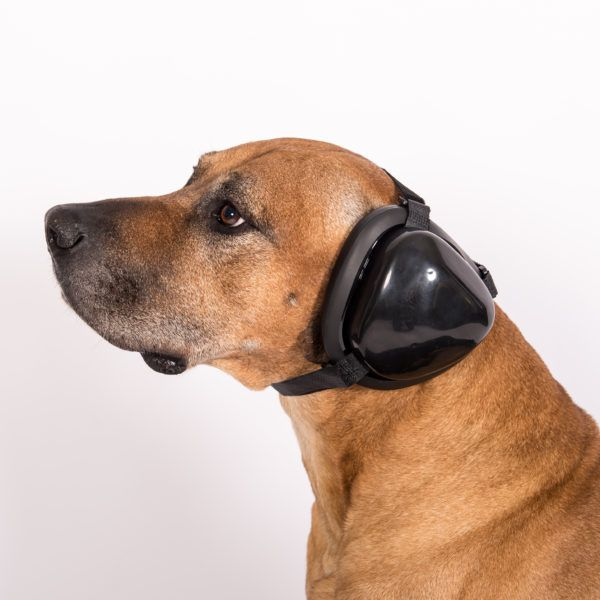 Mutt Muffs Gehörschutz für Hunde schwarz