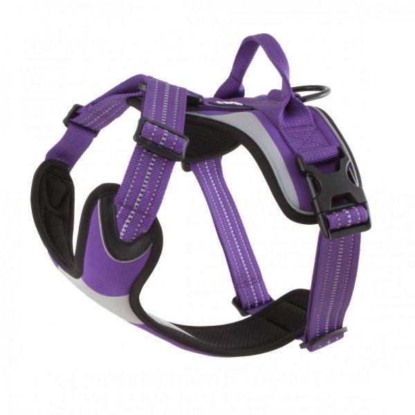 Hurtta Dazzle-Geschirr violett